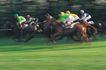 意志赢得0144,意志赢得,运动,赛马 骑师