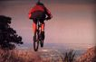 世界选赛0184,世界选赛,运动,骑自行车