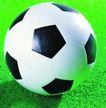各种球类0026,各种球类,运动,一个足球