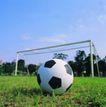 各种球类0039,各种球类,运动,足球