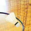 各种球类0044,各种球类,运动,羽毛球