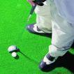 各种球类0052,各种球类,运动,高尔夫运动 小白球