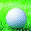 各种球类0060,各种球类,运动,白色的高尔夫球