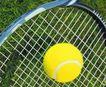 各种球类0067,各种球类,运动,黄色网球 网球拍