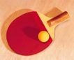 各种球类0069,各种球类,运动,乒乓球 黄色的球 红色胶皮
