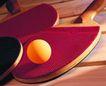 各种球类0070,各种球类,运动,乒乓球拍子