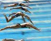 狂飙竞技运动0061,狂飙竞技运动,运动,游泳比赛