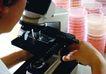 工业环境0249,工业环境,工业,显微镜