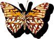 蝴蝶百科0235,蝴蝶百科,动物,