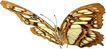 蝴蝶百科0257,蝴蝶百科,动物,