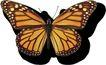 蝴蝶百科0261,蝴蝶百科,动物,