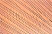 专业科学0185,专业科学,医疗,木色 组织结构