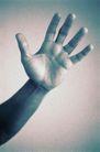 医疗与解剖0054,医疗与解剖,医疗,手掌 厚实的手
