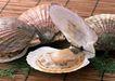 上盘海鲜0178,上盘海鲜,水果食品,