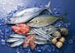 上盘海鲜0194,上盘海鲜,水果食品,