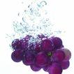 动感水流0041,动感水流,水果食品,
