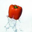 动感蔬菜0004,动感蔬菜,水果食品,新鲜辣椒