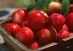 水果果实0164,水果果实,水果食品,