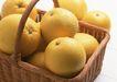 水果果实0172,水果果实,水果食品,