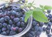 水果果实0173,水果果实,水果食品,