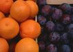 水果果实0181,水果果实,水果食品,