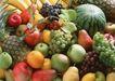 水果果实0183,水果果实,水果食品,
