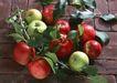 水果果实0189,水果果实,水果食品,