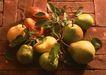水果果实0193,水果果实,水果食品,