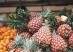 水果果实0195,水果果实,水果食品,