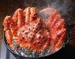海鲜美食0098,海鲜美食,水果食品,