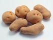 生鲜牛鱼猪鸡蔬菜0133,生鲜牛鱼猪鸡蔬菜,水果食品,