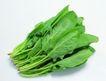 生鲜牛鱼猪鸡蔬菜0147,生鲜牛鱼猪鸡蔬菜,水果食品,