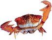 食材海鲜0052,食材海鲜,水果食品,