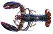 食材海鲜0066,食材海鲜,水果食品,小龙虾