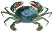 食材海鲜0071,食材海鲜,水果食品,螃蟹