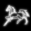 动物0012,动物,霓虹灯设计,神马 白色身躯