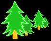 植物0007,植物,霓虹灯设计,枞树林 绿色树冠