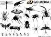 各类图案0024,各类图案,欧美花纹元素,昆虫 蜘蛛 蜻蜓