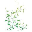 花样背景0124,花样背景,花纹图案,
