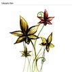 植物花纹0008,植物花纹,花纹背景,