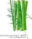 竹子荷花植物0040,竹子荷花植物,节日喜庆,