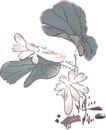 竹子荷花植物0051,竹子荷花植物,节日喜庆,荷叶