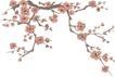 竹子荷花植物0055,竹子荷花植物,节日喜庆,寒梅