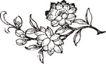 竹子荷花植物0075,竹子荷花植物,节日喜庆,