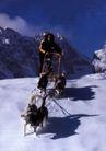 冬季运动篇0313,冬季运动篇,运动,