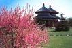 中国美景0035,中国美景,自然风景,