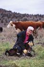 农村经济0129,农村经济,农业,
