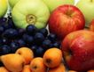 日常蔬菜0056,日常蔬菜,农业,