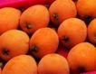 日常蔬菜0063,日常蔬菜,农业,杏子