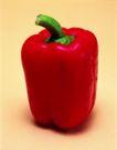 日常蔬菜0087,日常蔬菜,农业,